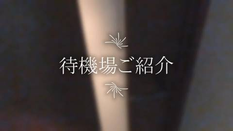 ビデオイメージ